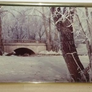 "Other - Vintage 16"" x 10"" Winter Forest scene gold framed"